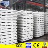 Panneau du mur ENV de construction en Chine (SP019)