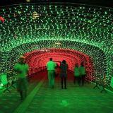 Luz ao ar livre da decoração do Natal da cortina do feriado do diodo emissor de luz