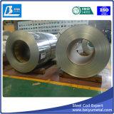 Поставщик Китая гальванизированной стальной катушки