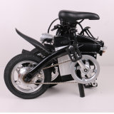 12inch elektrisches zwei Wheeles faltendes Fahrrad