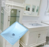 Kfc Lavatory Ceramic Under Couter Sink in Amerika (SN015)