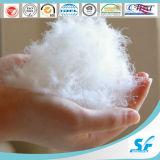 El ganso blanco 100% de la cubierta del algodón abajo soporta