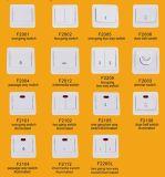 Tornar e inflamar - o soquete retardador da tevê da parede de Europa, soquetes elétricos (F2008)