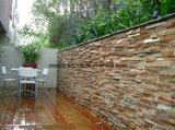 طبيعيّ حجارة أردواز جدار لأنّ زخرفة