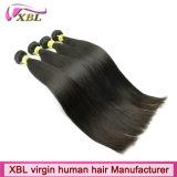 Types de cheveu brésiliens de belle armure neuve de cheveux humains