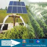 Théorie de pompe centrifuge et pompe à eau d'égout auto-amorçante à haute pression