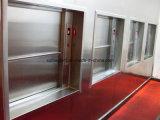 Windows 유형 500kg의 Dumbwaiter 엘리베이터