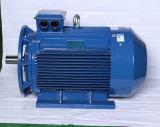 Preço trifásico do motor de indução do OEM, Electricmotor resistente para a venda