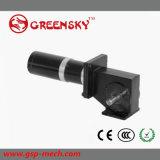 Cepillo micro de 6W-400W 12V/24V/90V/motor sin cepillo del engranaje de la C.C.
