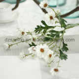 Цветок сельской маргаритки типа искусственний для венчания и домашнего украшения (SW17677)