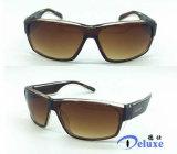 Le plastique neuf folâtre des lunettes de soleil avec le logo fait sur commande (DP1143TL)