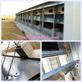 Low Price를 가진 Poultry House에 있는 높은 Quality Professional Equipment