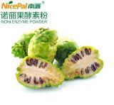 Poeder van het Enzym van het Fruit Noni van 100% het Natuurlijke voor het Geconcentreerde Poeder van het Vruchtesap