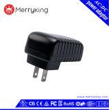 Engelse Muur 60950 zet 12V 1A de Adapter van de Macht van de Output van gelijkstroom op