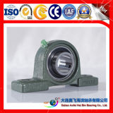 A & F que lleva el cojinete del cojinete Rodamiento simple de la fila Rodamientos radiales