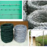 Nastro metallico pungente per la rete fissa della maglia