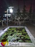 éclairage solaire complet de 12W IP65 DEL pour la cour de grand dos de jardin