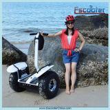Individu-Équilibrage à deux roues outre du véhicule électrique de route