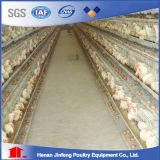Hは養鶏場100000の層ののための自動家禽のケージをタイプする