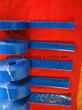 Boyau bleu/rouge/jaune 150 de tailles importantes de couleur verte de l'eau