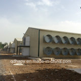 農業機械が付いている軽い鉄骨構造の養鶏場