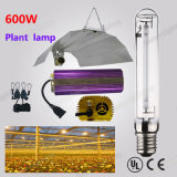 Высокий светильник 600W E40 HPS натрия выхода люмена