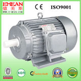Электрический двигатель индукции серии y трехфазный