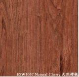 Aço pre pintado da grão de madeira (cereja natural)