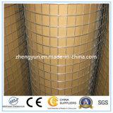 Mesh galvanisé / maillage métallique carré / maillage soudé