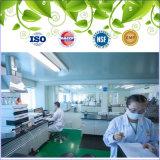 GMP zugelassener organischer grüner Tee-Gewicht-Verlust