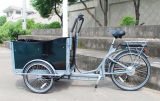 Elektrisches Fahrrad mit drei Rädern für Ladung