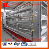 Cage automatique/semi-automatique de poulet de couche de matériel de volaille