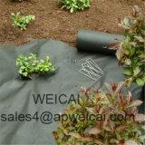 草が茂った領域の芝地のステープルのタイプUのステープルの使用