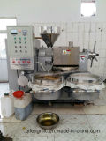 Cottonöl-Presse-Maschine in der heißen Schrauben-Öl-Vertreiber-Maschine