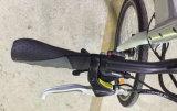 26inch李イオン電池山の人々のための電気バイクのEバイク