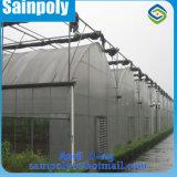 Дом пленки высокого качества фабрики Китая зеленая для томата