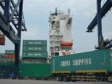 Consolidar o serviço de transporte internacional de China local para clientes mundiais