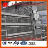 Gaiola automática/semiautomática da galinha da camada do equipamento das aves domésticas