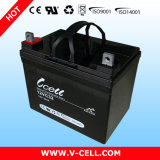 32ah 12voltage Lead Acid Battery voor Alarm System