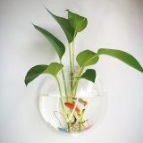 Tanques de peixes fixados na parede redondos do vidro acrílico da decoração Home
