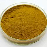 GMPのロータス葉のエキスのロータス葉のアルカロイド2%