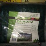 La rete verde oliva di plastica per le piante di protezione e la frutta di raccolta