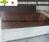Film Faced chute ring Plywood 18mm for Concrete Formwork