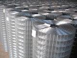 溶接された金網か最もよい価格は金網ロールを溶接した