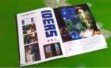 Papel revestido de C2s para los folletos de Maganize de la impresión