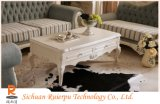 ヨーロッパ式の居間のコーヒーテーブル