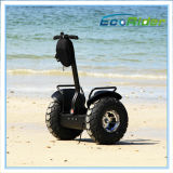 전기 2륜 전차, 2개의 바퀴 전기 각자 균형 스쿠터, 개인적인 차량, Esoi