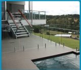 Syndicat de prix ferme en verre de Frameless clôturant la broche en verre carrée d'acier inoxydable (80520)