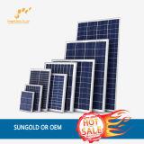 comitato solare policristallino 100W con buona qualità
