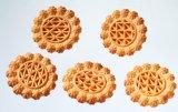 자동적인 건빵 생산 라인 건빵 기계